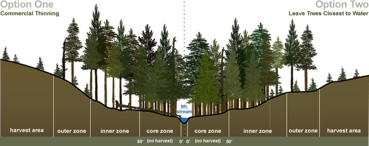Graphic Depicting Two Approaches to Achieve Desired Future Conditions in Buffer Zones